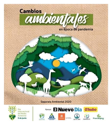 Ambiental 2020