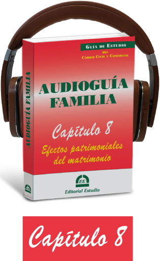 Cap. 8. Efectos patrimoniales del matrimonio (audioguía de familia)