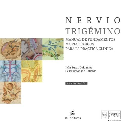 Nervio trigémino. Manual de fundamentos morfológicos para la práctica clínica